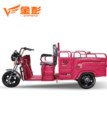Electric Tricycle (QJ V120 )