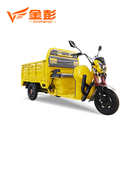 Electric Tricycle (DLS III 150 )