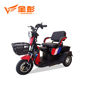 Electric Tricycle (A6)