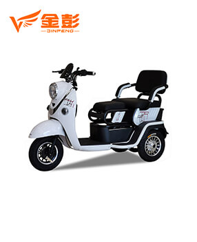 Electric Tricycle (A6L)