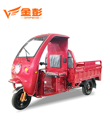 Electric Tricycle (FX150 )