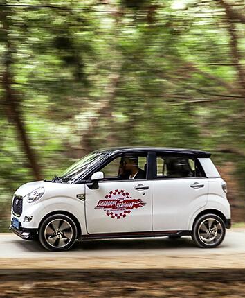 Electric Auto (LEO)