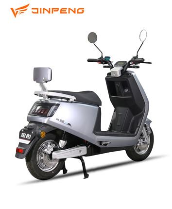 Electric Bike (X1)