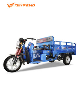 Electric Tricycle (HY 220A)
