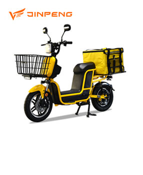Electric bike (T1)